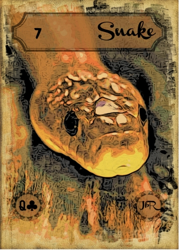 Vintage Lenormand, by RootweaverCard # 7 - Snake