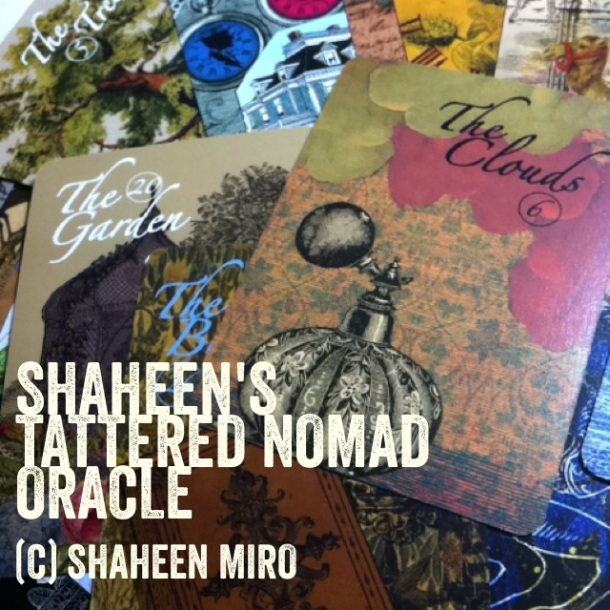 shaheen oracle